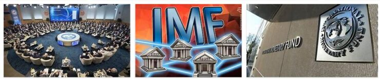 IMF Business